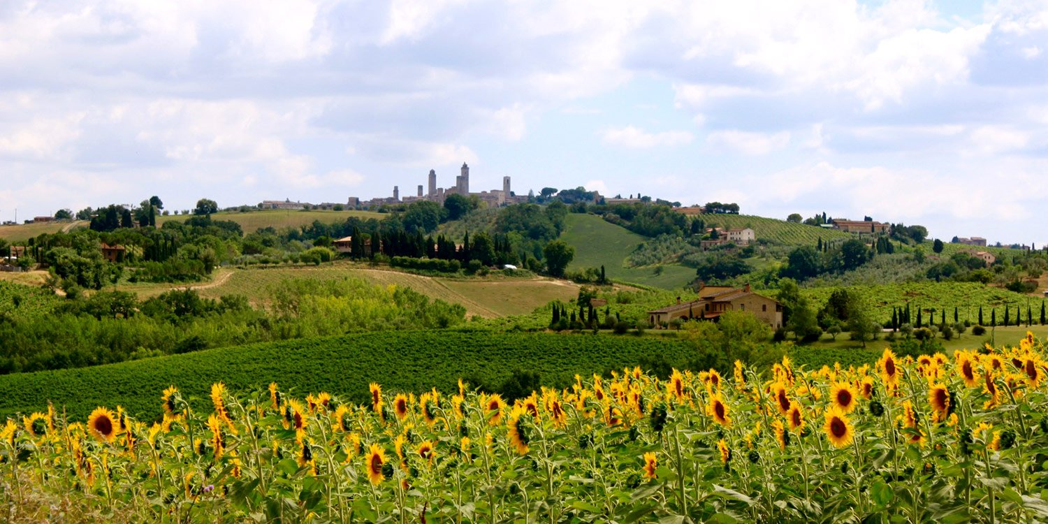 Bicycle Tours in Tuscany